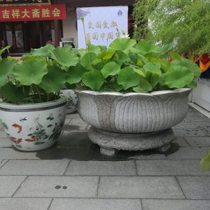 Exquisite Natural Stone Planters To Dazzle Up Your Decor Alibaba Com
