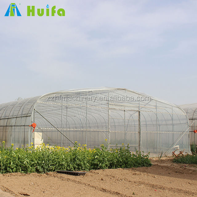 Agricultural single span vegetable growing commercial green house