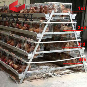 5 tier 200 birds laying hens chicken cage battery cage with nipple for layers farms in nigeria