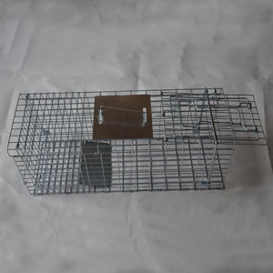 pigeon trap cage for catch live pigeon birds