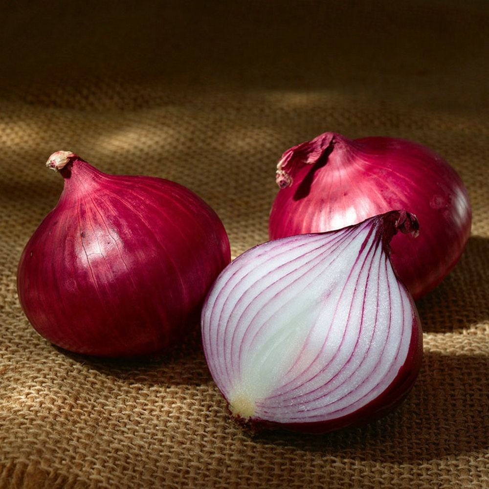 Professional Export Fresh Red/Yellow/White Onion To Malaysia/Sri lanka