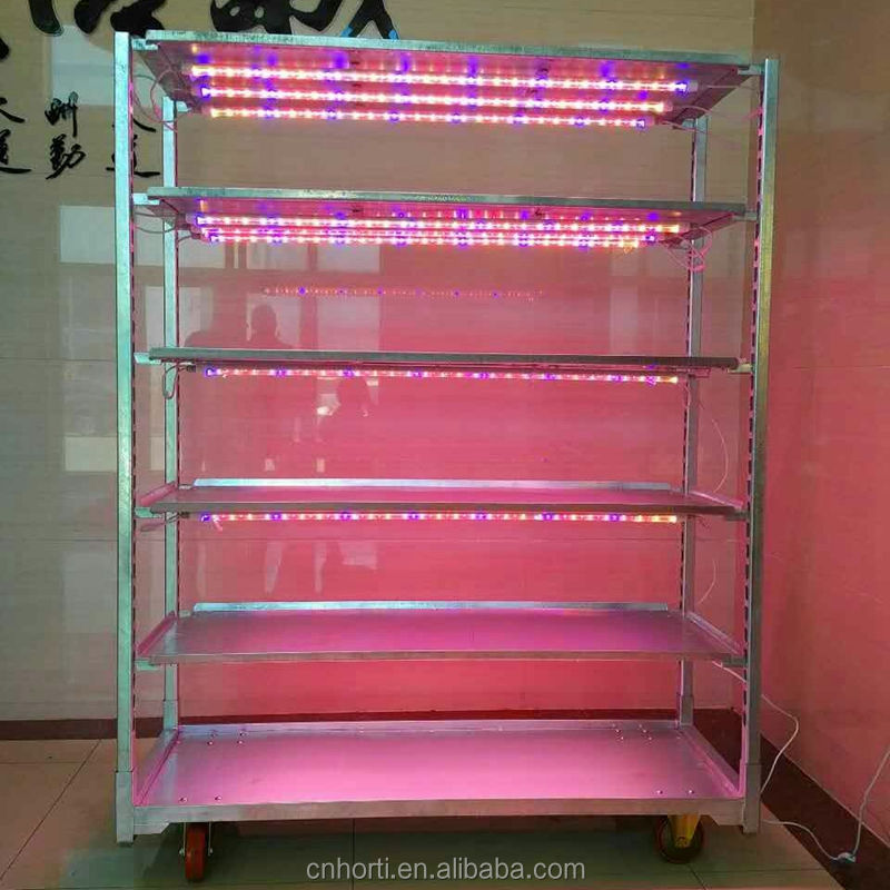 Riempire LED light semenzaio trolley per crescere piantine