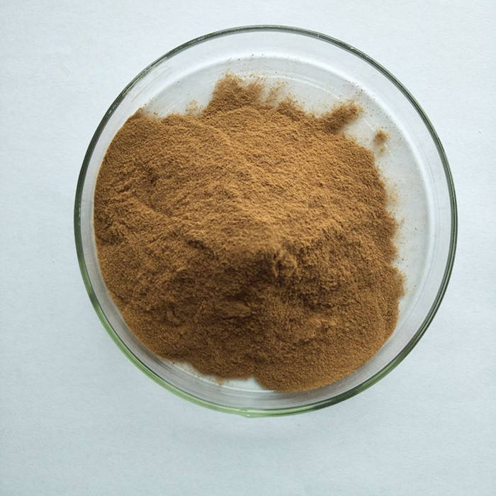 factory supply 100% pure natural camellia seed tea saponin extract powder