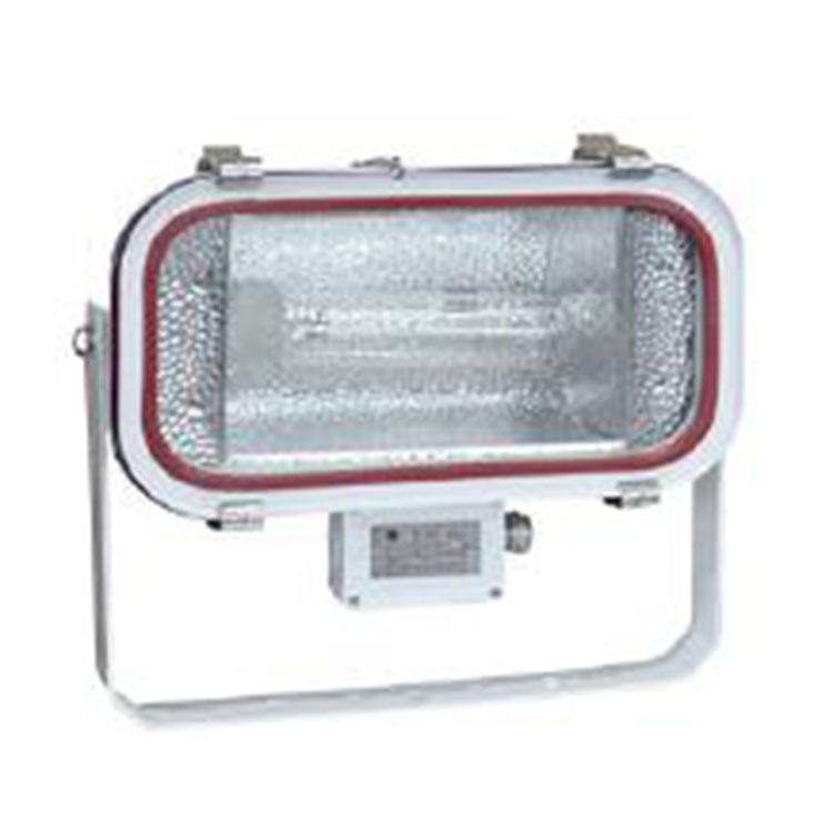 TG6 400w 1000w stainless steel waterproof halogen lamp floodlight, marine outdoor metal halide floodlight