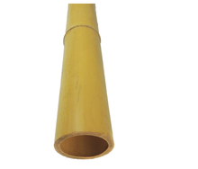 HOT DEAL 2019 Natural Bamboo Pole From Vietnam