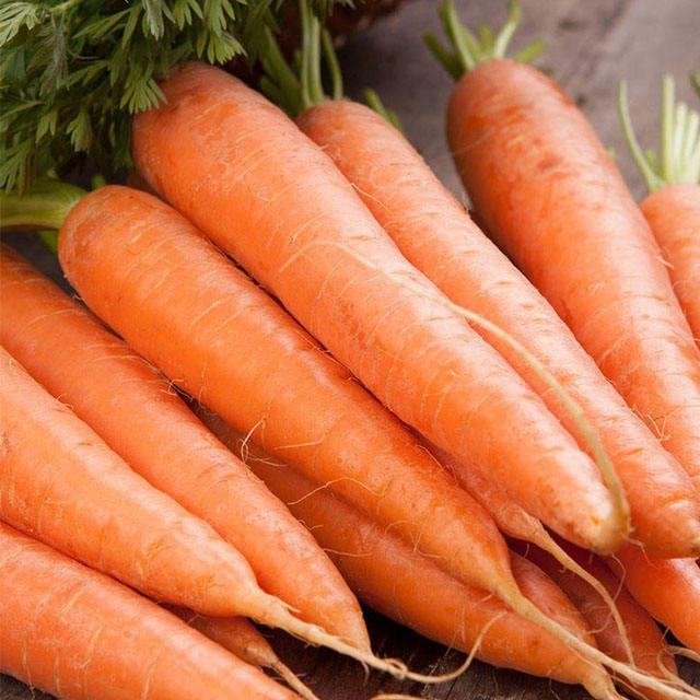 Similar Products Contact Supplier Leave Messages Carrot 2018/Carrot good quality/ fresh carrot for all market