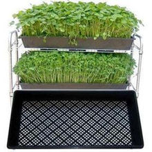 2019 Hot sale plastic black 1020 flat tray, grow wheatgrass hydroponics tray for nursery
