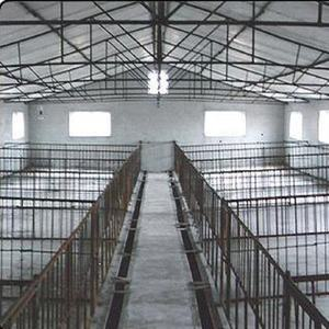 Piggery Cooling Fan Piggery Cooling Fan Suppliers And