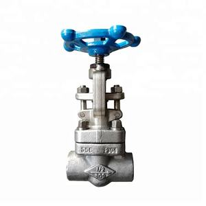 SW Connection F304 Stainless Steel Forged Globe Valve