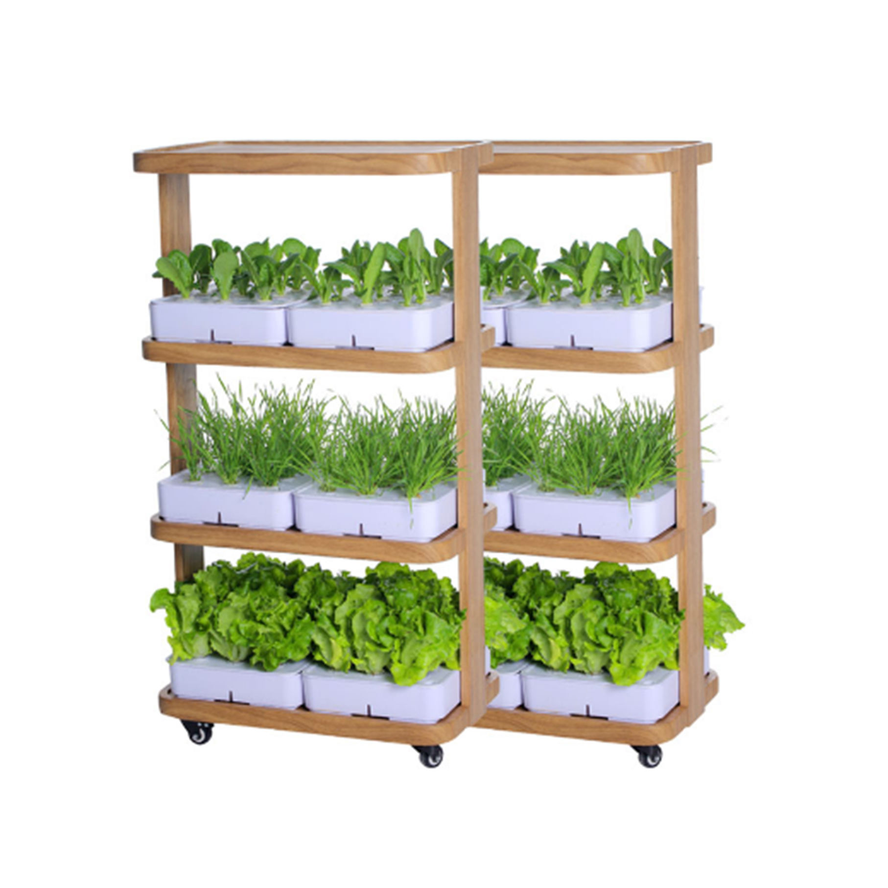Shenzhen best seller oem hydroponic greenhouse grow kits the indoor gardener for home vegetable growth