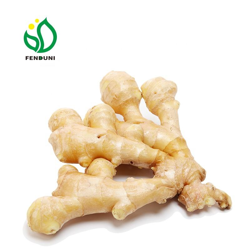 Wholesale dry split ginger Top quality (50g~200g up)