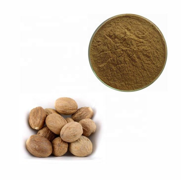 100% Pure Natural Nutmeg Extract Powder with Favorable Price