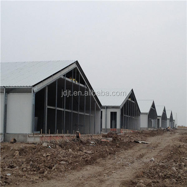 layer egg and broiler design steel frame poultry chicken shed farm building