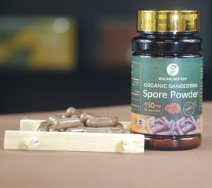 Preventie Diabetes Immuunsysteem Booster Kruiden Supplement Ganoderma Lucidum Reishi Paddestoel Spore Poeder Capsule