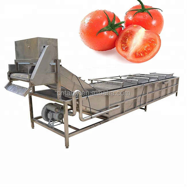 best quality strawberry washing machine/strawberry cleaning machine