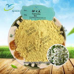 Sophora Japonica Extract 98% Quercetin Bột Số Lượng Lớn