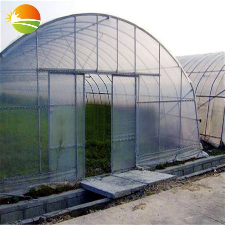 hot product best price original equipment manufacture tunnel greenhouse for sale