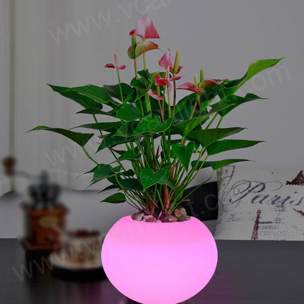 2020 New waterproof rgb 16 colors change led ball shape flower pot