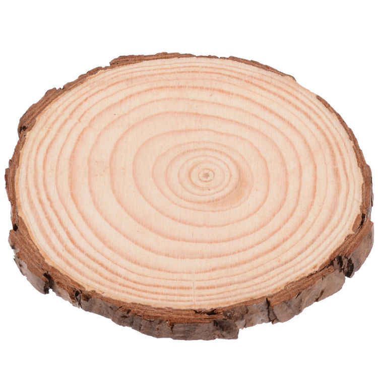 new product wholesale unfinished circle oval round natural wood wall decor enterpiece crafts, wood slices for DIY arts