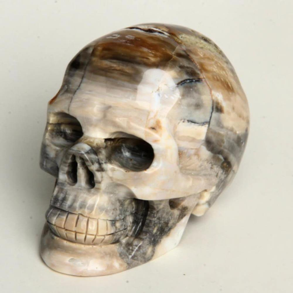 Beautiful natural wood fossil crystal skulls rough stone carving