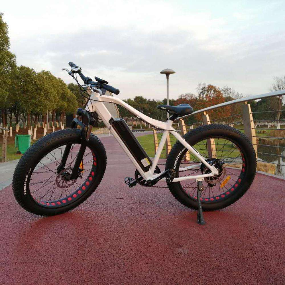 Factory directly sell 48v 500w mountain fat tyre electric bike at low price(RSD-513)