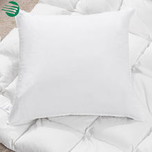Feather & Down white Square throw pillow cushion cores