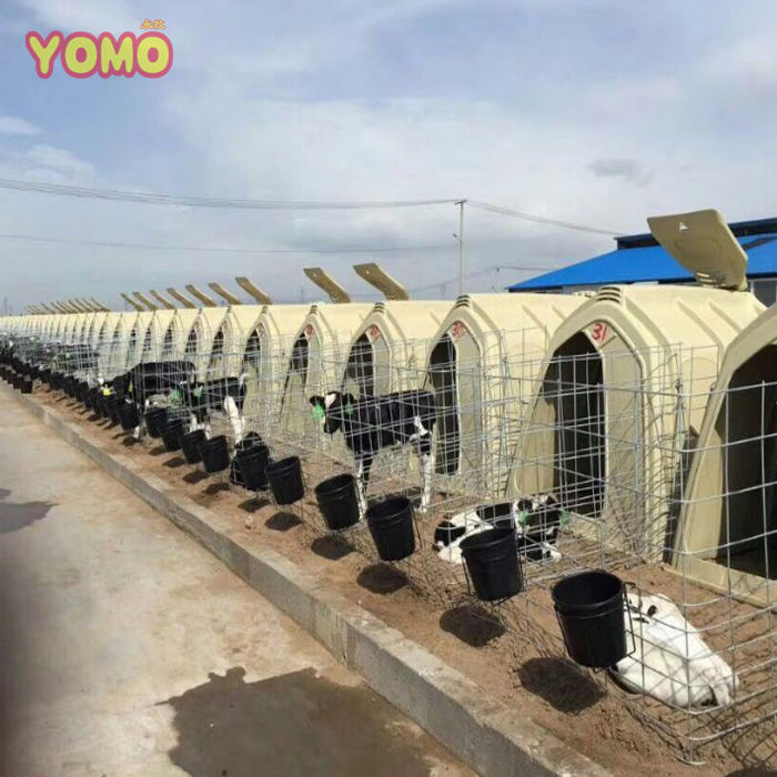YOMO dairy farm equipment Rotational moulding big calf hutches cow farm equipment