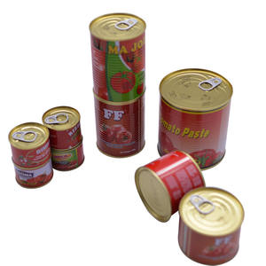 70g cheap price canned tomato paste