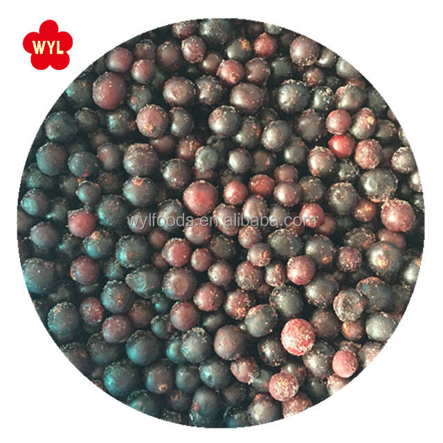 IQF Fruit Frozen black currant with wholesale price
