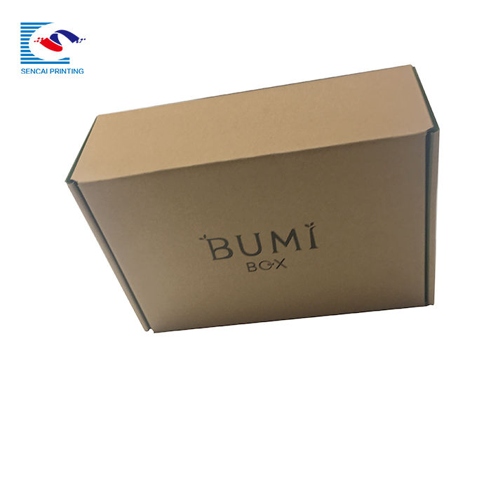 Custom Small Mail Paper recycle Kraft Corrugated shipping Box