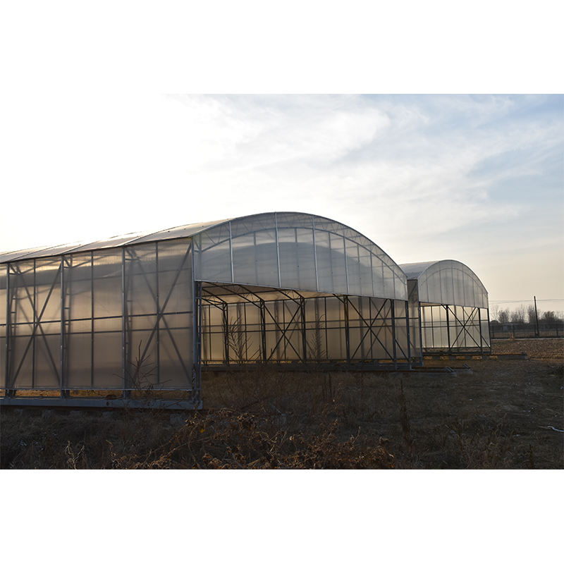 Pc Sheet Agricultural Commercial Greenhouse Commercial Polycarbonate Greenhouse For Agriculture