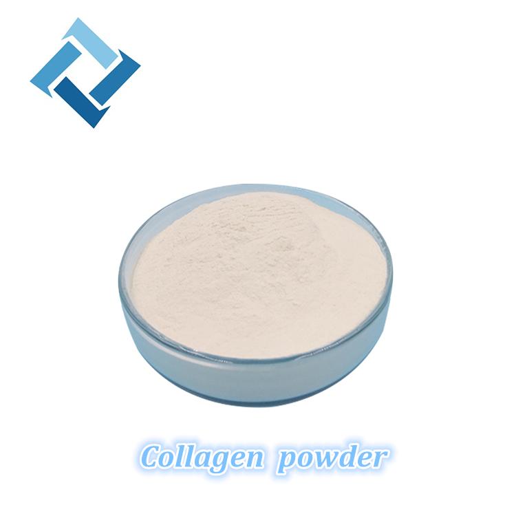 Melhor Qualidade de Fornecimento Fabricante Proteína Pura 99% Pó de Colágeno Da Pele de <span class=keywords><strong>Peixe</strong></span>