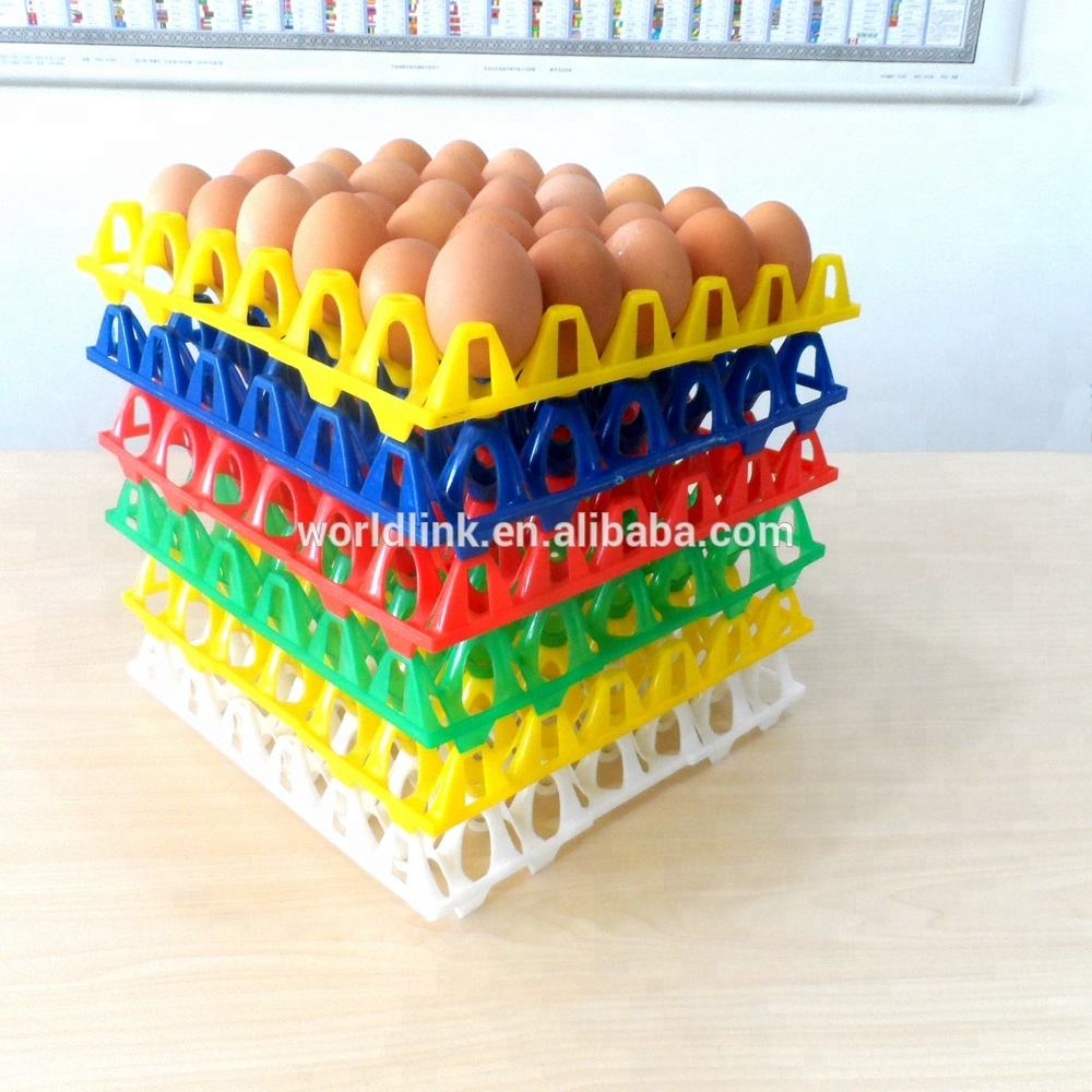 Best Selling Colorful Plastic Quail Egg and Egg Tray
