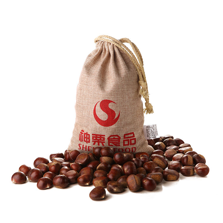 chinese chestnuts sapplings for sale