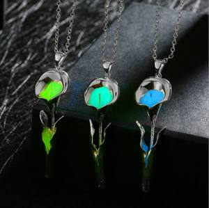 MRY047 Silver Plated glow in the dark luminous stone Flower Shaped Pendant Necklace