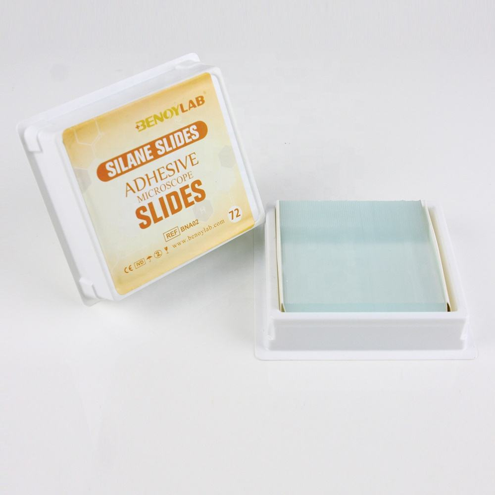 BENOYLAB Hechting <span class=keywords><strong>POLY</strong></span>-LY-SINE Microscope Slides met Afgeschuinde <span class=keywords><strong>Randen</strong></span>
