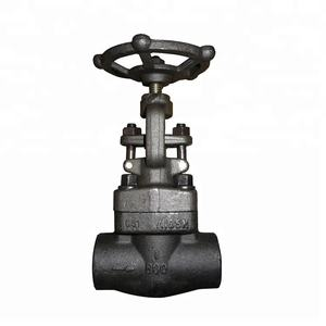 Forged Steel A105 NPT Connection Globe Valve