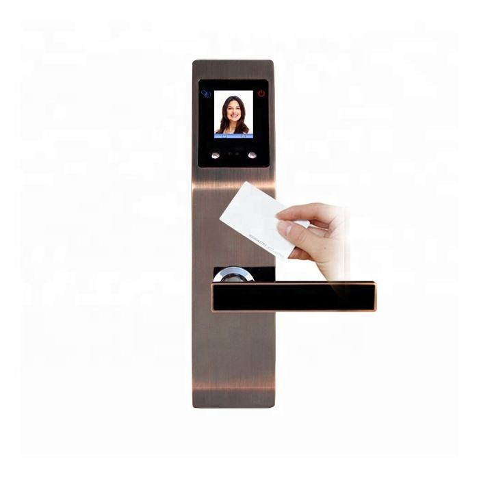 High quality Facial Recognition door lock home security smart face recognition biometric fingerprint door lock with camera