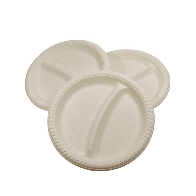 Plastic Disposable Compostable Party Plates Food Trays Biodegradable Sugarcane Plates