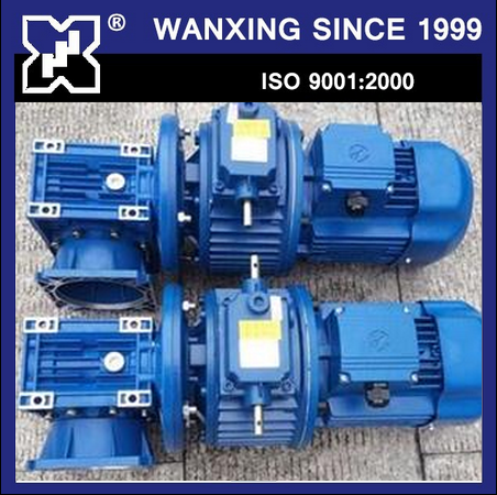 NMRV 063 Worm Gearbox with Horizontal Type Udl Series Planet Cone-Disk Stepless Motor Speed Variator
