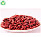 wholesale cook dried small dried red kidney beans
