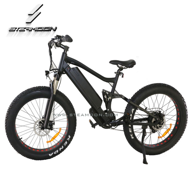 Top quality 더 어린 love 250 와트/350 와트/750 와트/1000 와트 ebike/ebicycle/electrick 자전거/전기 자전거 와 rear motor