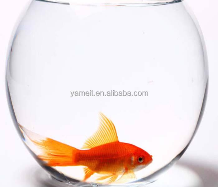 OEM/ODM fornitore porcellana betta pesce carro armato di prodotti animali da compagnia