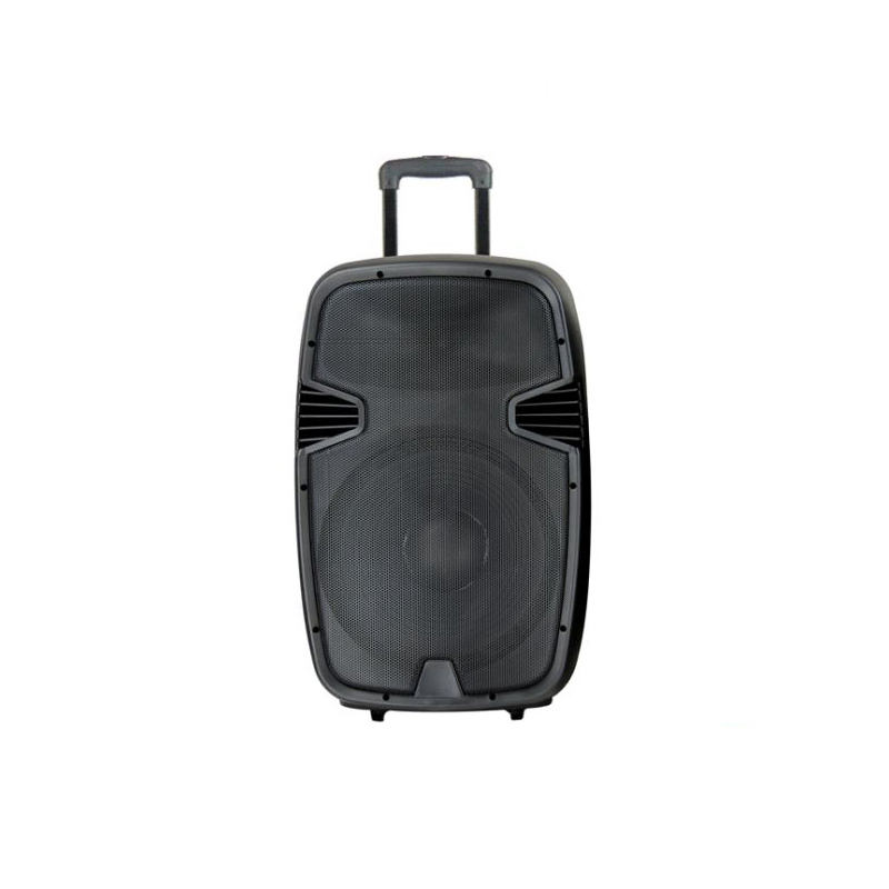 Promotional Powered Portable Trolley Speaker With Handle Wheels FM Radio Surround Sound System Speaker