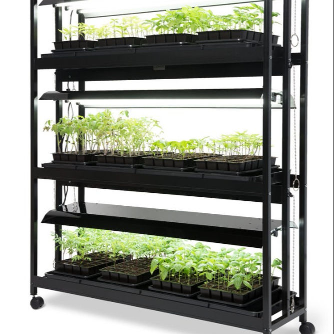 Indoor microgreen growing/seedling hydroponic system with lights trays