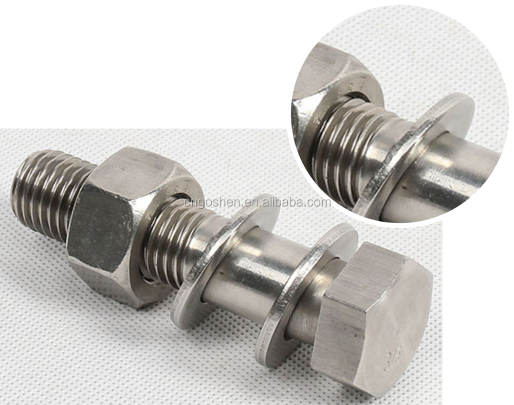 Stainless Steel SS304 Ss 316 Hex Bolts and Nuts