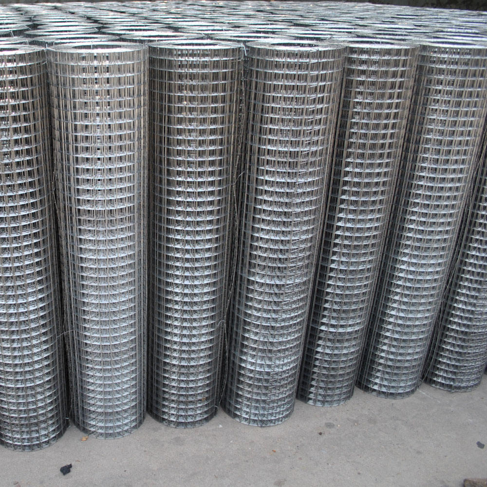 Stainless Steel Coil Welded Wire Mesh with Ss Material