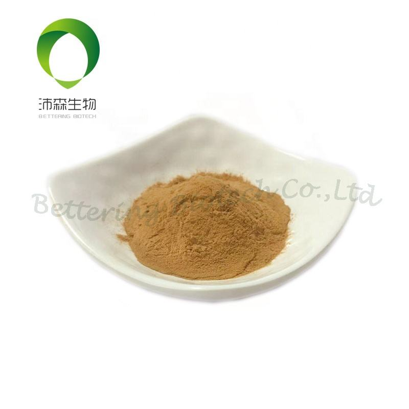 100%natural persimmon extract powder Contains Tannin Use to Anti Aging with best price