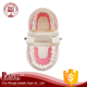 China wholesale Good Quality Nursing Training dental teeth model