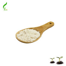 ginseng root ,leaf extract/ Ginsenoside